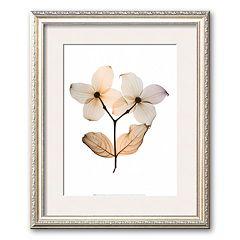 Art.com 'Dogwood I' Framed Art Print by Steven N. Meyers