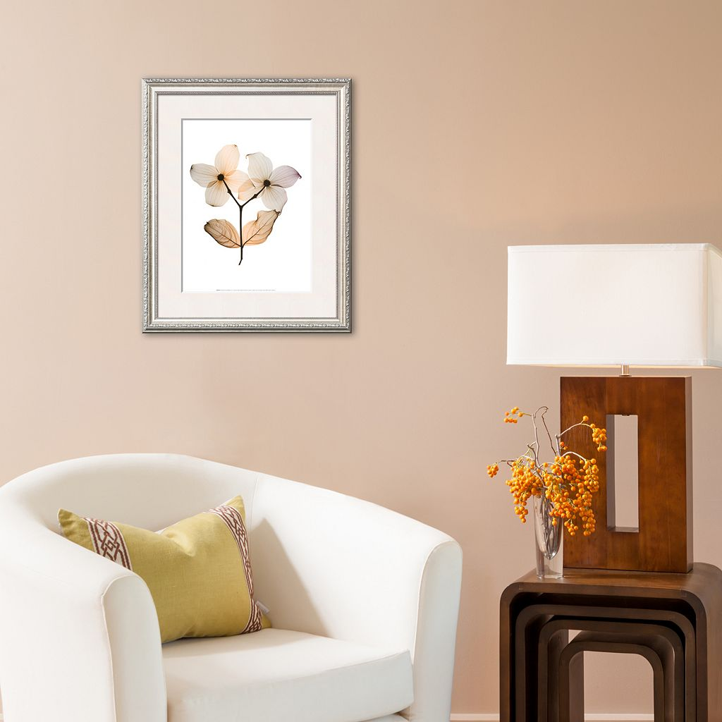 Art.com Dogwood I Framed Art Print by Steven N. Meyers