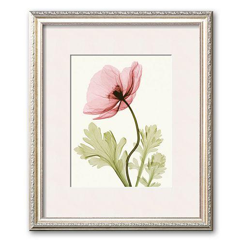 """Art.com """"Iceland Poppy II"""" Medium Framed Art Print by Steven N. Meyers"""