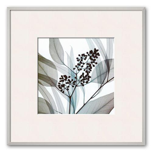"""Art.com """"Eucalyptus"""" Framed Art Print by Steven N. Meyers"""