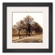 Art.com Row of Trees Framed Art Print By Harold Silverman