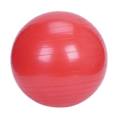 Sunny Health and Fitness Exercise Ball