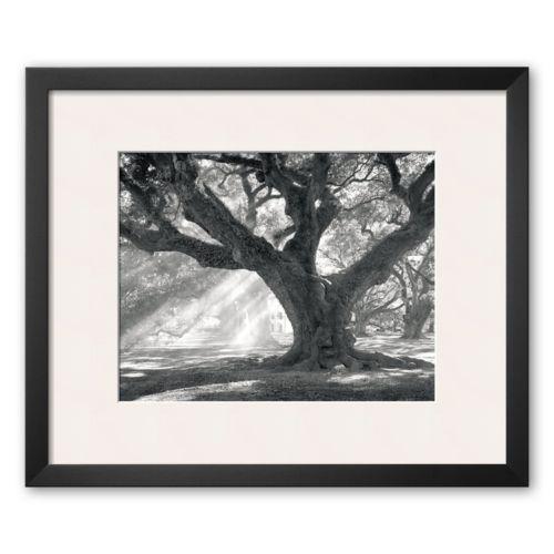 Art.com Andrew Oak, Afternoon Light Framed Art Print by William Guion