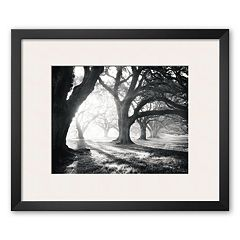 Art.com 'Oak Alley, Light and Shadows' Framed Art Print by William Guion