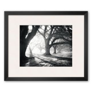 Art.com Oak Alley, Light and Shadows Framed Art Print by William Guion