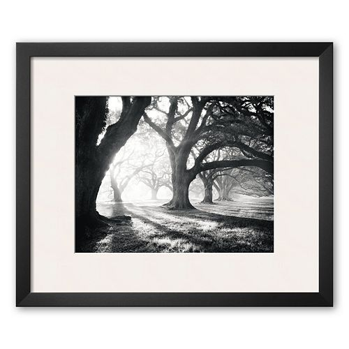 """Art.com """"Oak Alley, Light and Shadows"""" Framed Art Print by William Guion"""