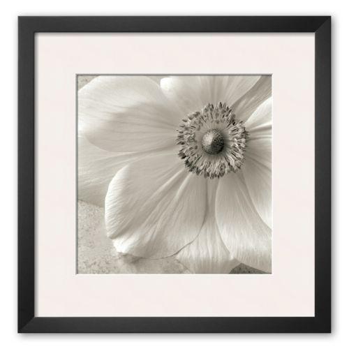 Art.com Poppy Study II Framed Art Print by Sondra Wampler
