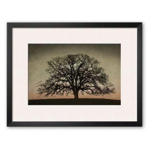 Art.com Majestic Oak Framed Art Print by David Winston