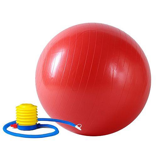 Sunny Health & Fitness 55cm Anti-Burst Gym Ball