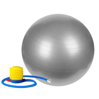 Sunny Health and Fitness 25.6-in. Anti-Burst Gym Ball