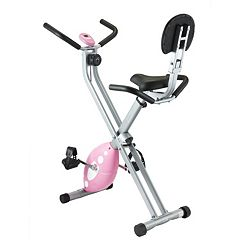 Sunny Health & Fitness Folding Pink Recumbent Bike (SF-RB1117)