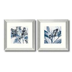 2 pc ''Eucalyptus'' Framed Wall Art Set by Steven Meyers
