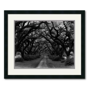 Path in the Oaks 2 Framed Wall Art by Monte Nagler
