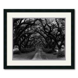 Path in the Oaks 2 Framed Wall Art by Monte Nagler