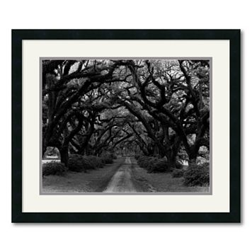 ''Path in the Oaks #2'' Framed Wall Art by Monte Nagler