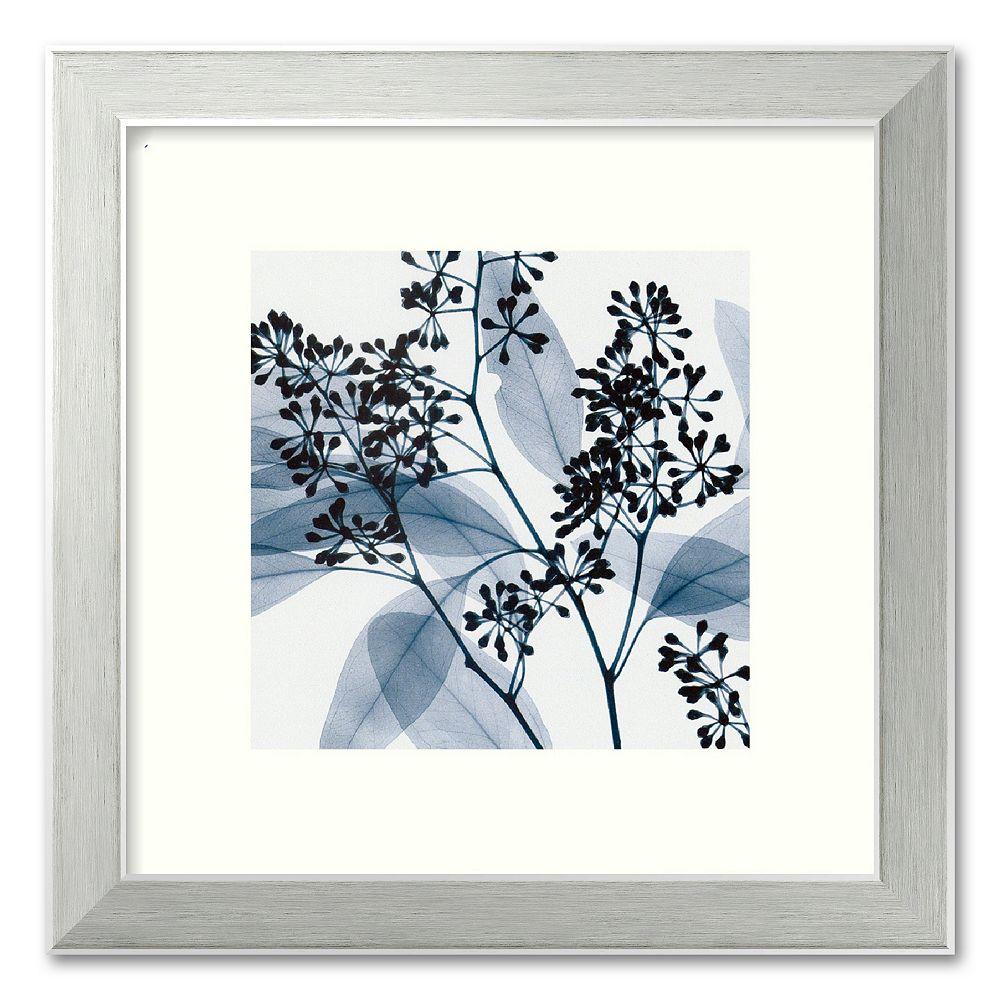 """Eucalyptus II"" Framed Art Print by Steven N. Meyers"