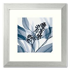'Eucalyptus I' Framed Art Print by Steven N. Meyers