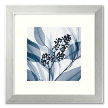 Eucalyptus I Framed Art Print by Steven N. Meyers