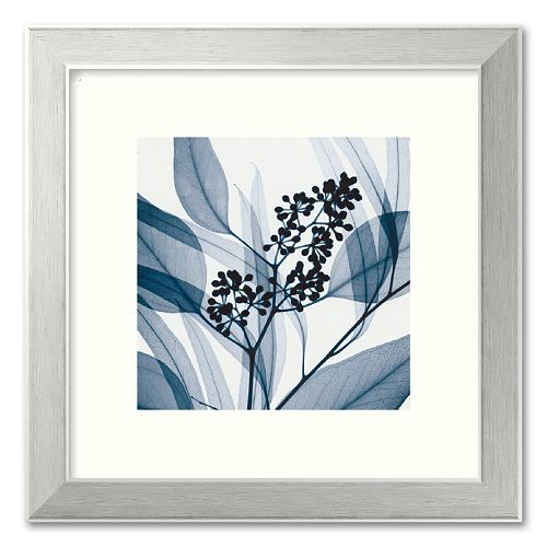 """""""Eucalyptus I"""" Framed Art Print by Steven N. Meyers"""