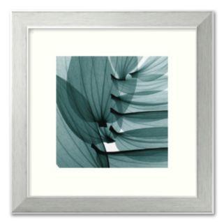 Lily Leaves Framed Art Print by Steven N. Meyers