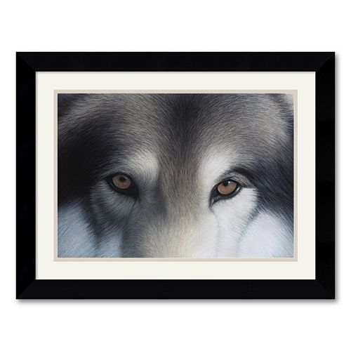 """Eyes of the Hunter: Gray Wolf"" Framed Art Print by Charles Alexander"