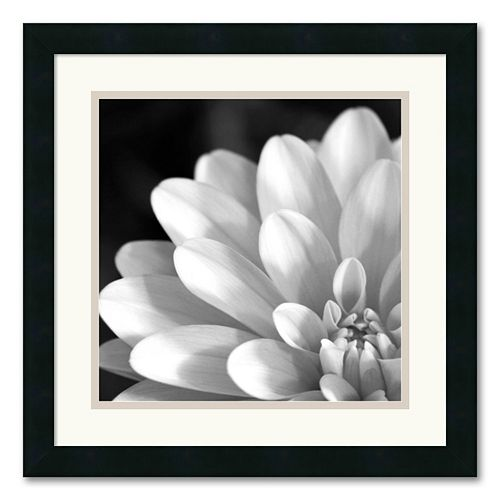 """Radiating Petals"" Framed Art Print"