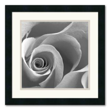 Rose Spiral II Framed Art Print