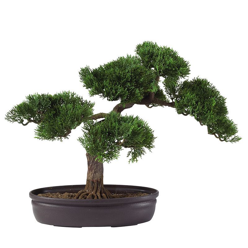 nearly natural Silk Cedar Bonsai Tree, Green Low pot with exposed rootssupplies realistic charm. Planter: 7W x3H x11 L 16H x16 1/2W x 12D (overall) Silk/plastic Wipe clean  Size: One Size. Color: Green. Gender: unisex. Age Group: adult.