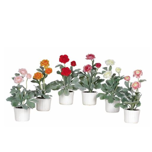 nearly natural 6-pc. Ranunculus Plant Set