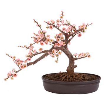 nearly natural Silk Cherry Blossom Bonsai Tree
