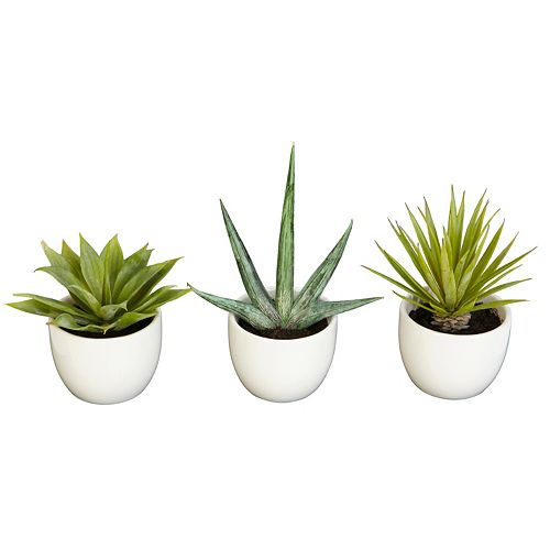 nearly natural Southwest Agave Artificial Plant 3-piece Set
