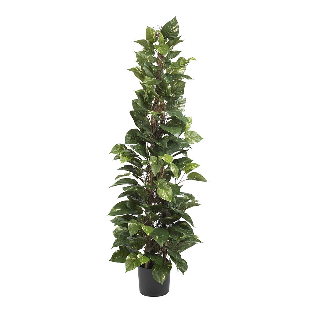 nearly natural Silk 63-in. Pothos Climbing Plant