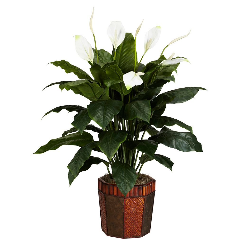 nearly natural Silk Spathyfillum Plant