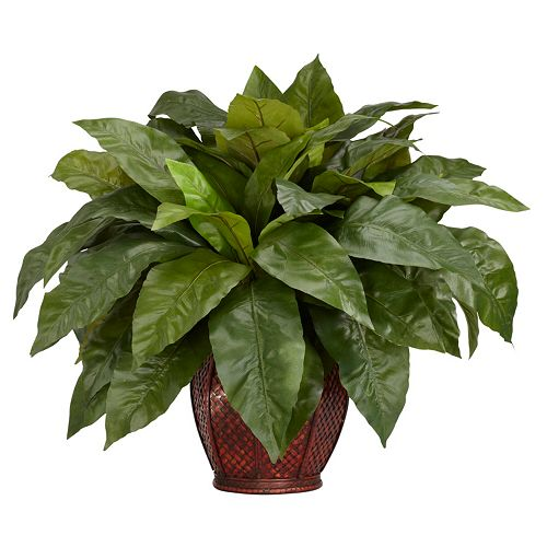 nearly natural Silk Birdsnest Fern Plant