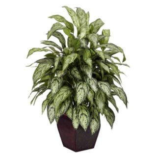 nearly natural Silk Silver Queen Plant