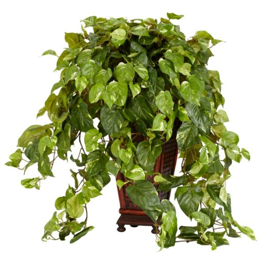 nearly natural Silk Vining Pothos Plant