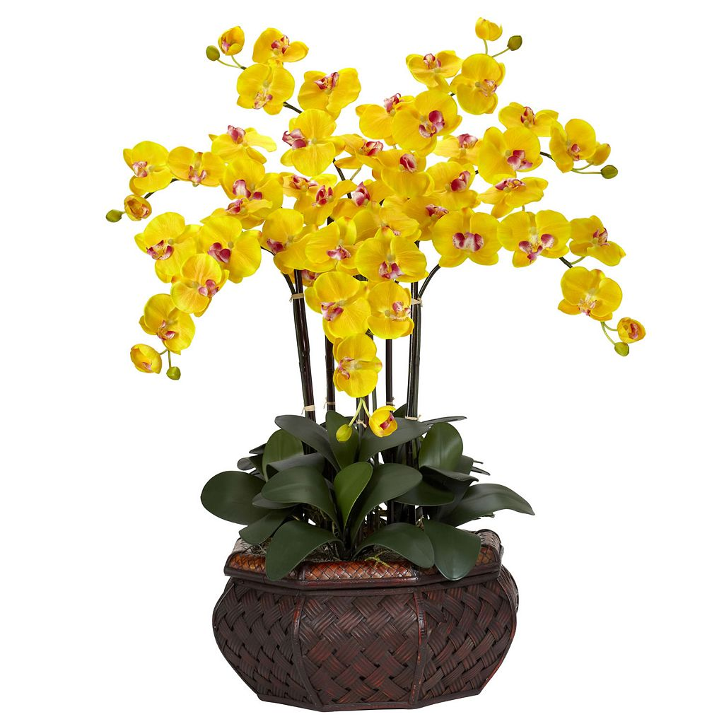 nearly natural Silk Phalaenopsis Large Floral Arrangement