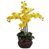 nearly natural Silk Phalaenopsis Floral Arrangement
