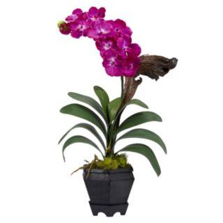 nearly natural Silk Vanda Floral Arrangement