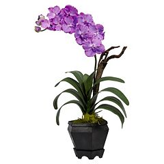 nearly natural Silk Vanda Floral Arrangement