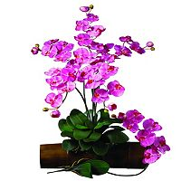 nearly natural 12 pc Silk Phalaenopsis Stem Set