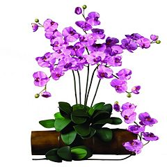 nearly natural 12-pc. Silk Phalaenopsis Stem Set