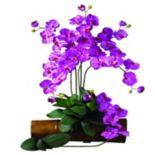 nearly natural 12-pc. Silk Phalaenopsis Stem Set