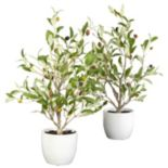 nearly natural 2-pc. Silk Olive Tree Set
