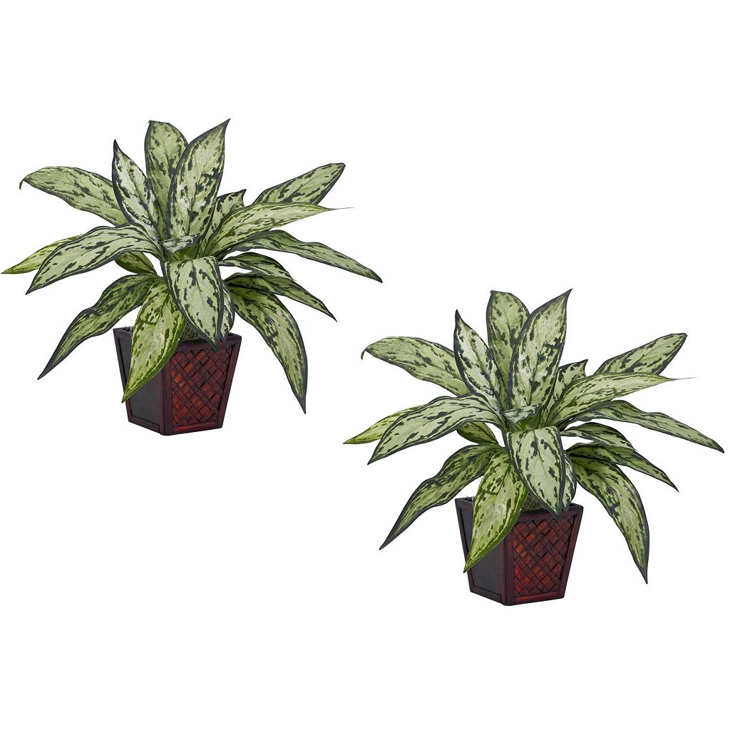 nearly natural 2-pc. Silk Silver Queen Potted Plant Set