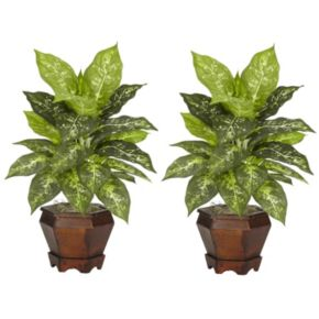 nearly natural 2-pc. Silk Dieffenbachia Potted Plant Set