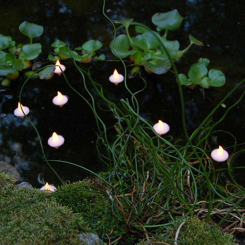 LumaBase 12-pk. Floating Flickering Tea Lights - Indoor and Outdoor