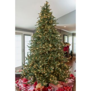Sterling 9 ft Clear Pre-Lit Layered Highlands Pine Artificial Christmas Tree - Indoor