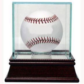 Steiner Sports Single Baseball Glass Display Case