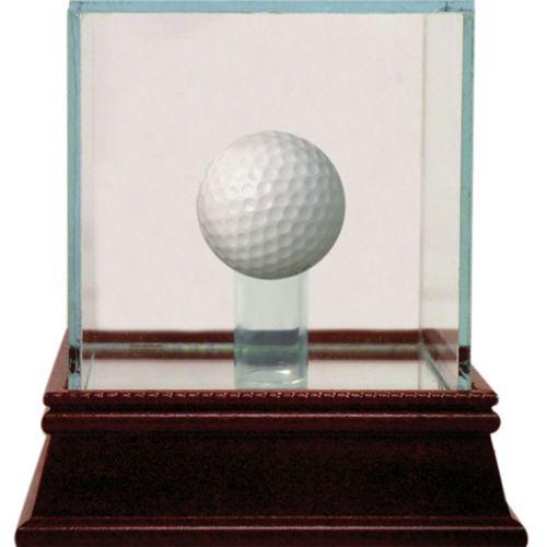 Steiner Sports Glass Golf Ball Display Case